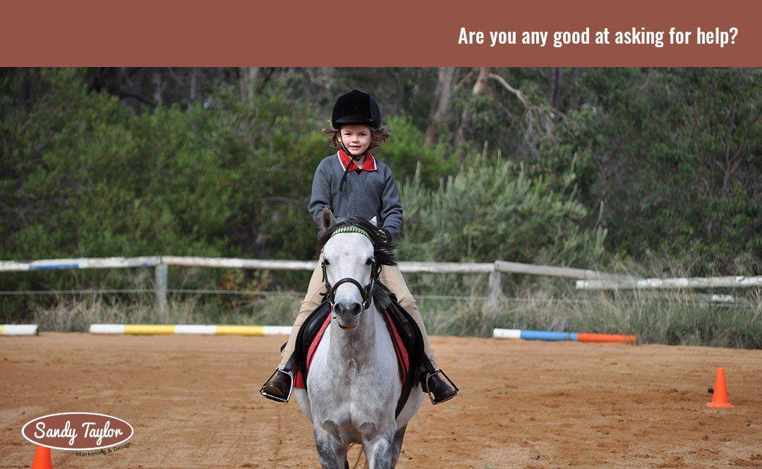 What I learned about problem solving from a six year old girl and a small pony